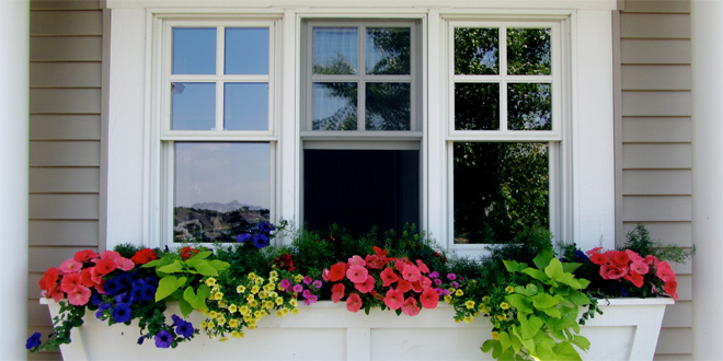 Single Hung Vs Double Hung Windows Difference And