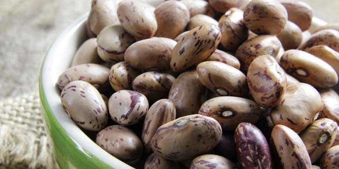 Black Beans Vs Pinto Beans Difference And Comparison Diffen