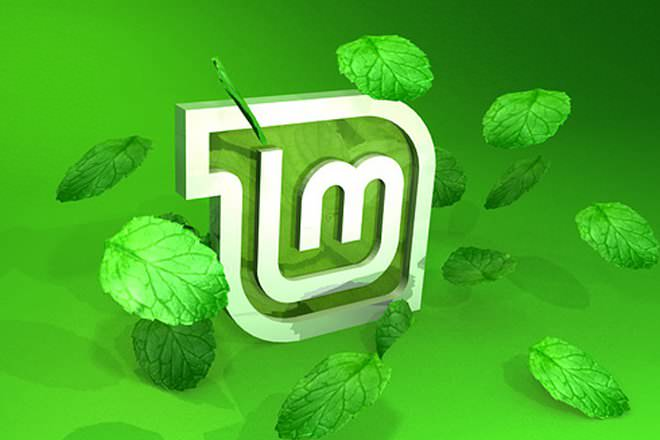 Linux Mint (spanish)