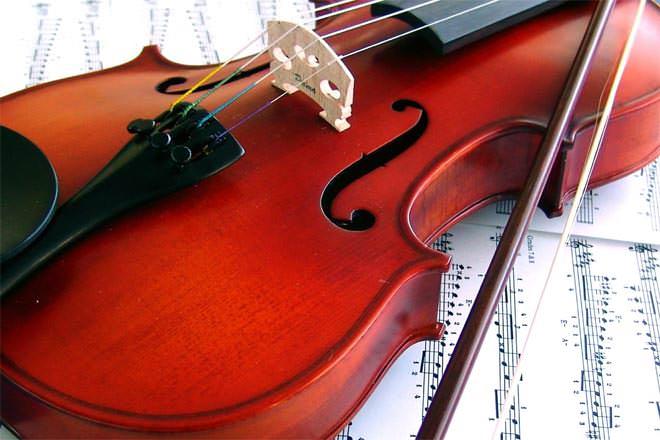 Viola vs violin difference and comparison diffen Vibeline