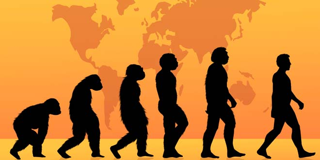 a comparison of the evolution theory and scientific creationism religious theory Science imposes that the evolution theory made all things difference between evolution and creation any field of science, nor has a religious background to.