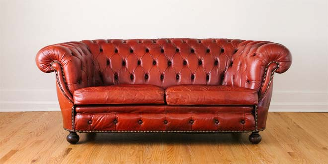 Fabric vs leather difference and comparison diffen How to treat leather furniture