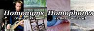 Homonym vs Homophone