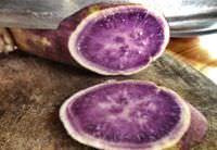 A yam with purple flesh.