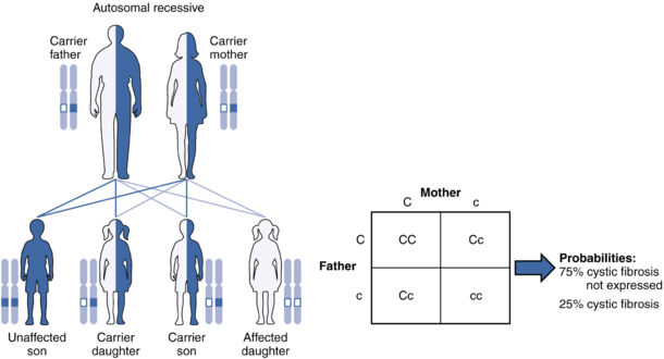 How diseases are inherited on the recessive allele. Image by the U.S. National Library of Medicine.