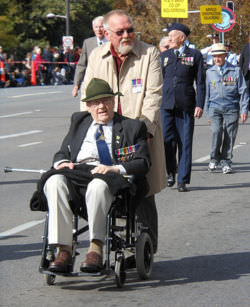War veterans in a Veterans Day parade