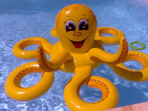 A plastic Octopus in a swimming pool.