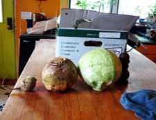 Rutabaga (center) between beetroot and cabbage