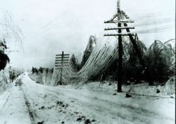 Coated in ice, power and telephone lines sag and often break during a blizzard.