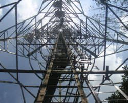 A 3G (CMDA) tower, viewed from the bottom up.