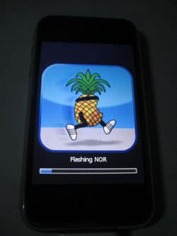 """Pwnapple"" icon used by redsn0w, PwnageTool and other PWN tools for jailbreaking an iOS device"