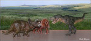 An illustration imagining a battle between two Triceratops against a Tyrannosaurus