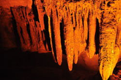 Stalactites formed from cave ceilings